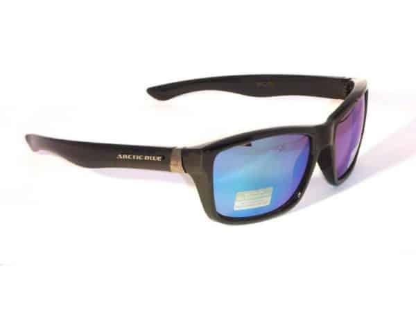 Artic Blue Wayfarer (svart)